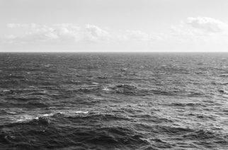 Pravica do morja