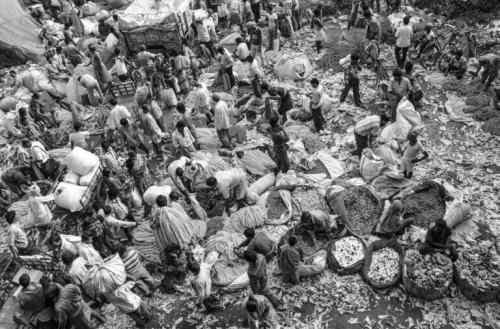 Jezni indijski kmetje so odšli v Delhi